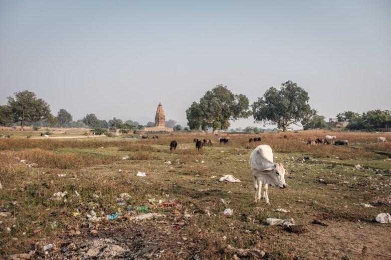 India Khajuraho 104