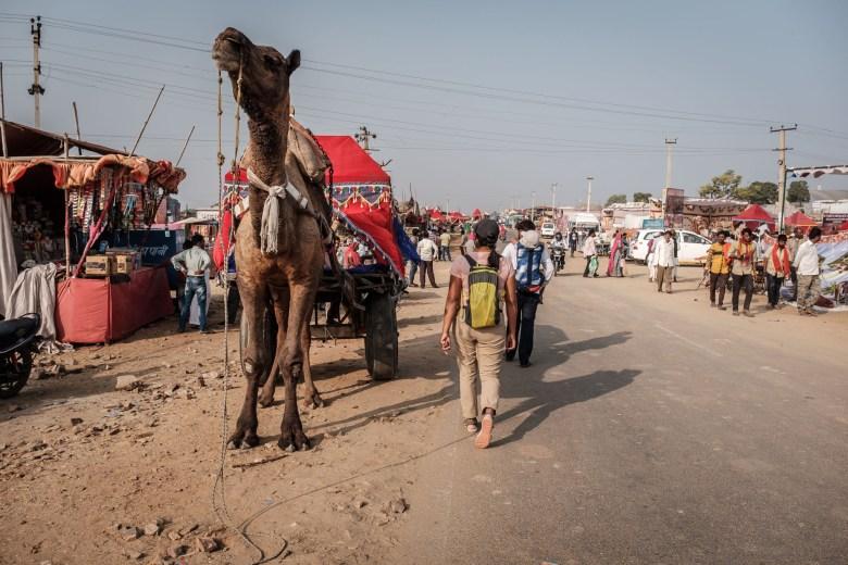 India Pushkar 35
