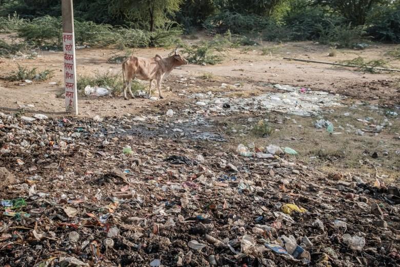 India Ranakpur 25