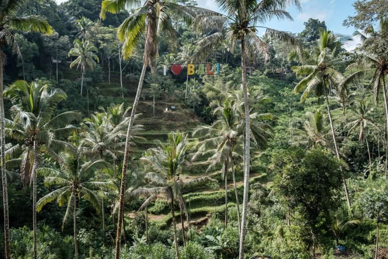 Indonesia Tirta Empul 08