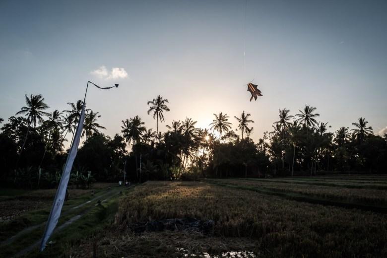 Indonesia Ubud 009