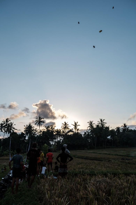 Indonesia Ubud 016
