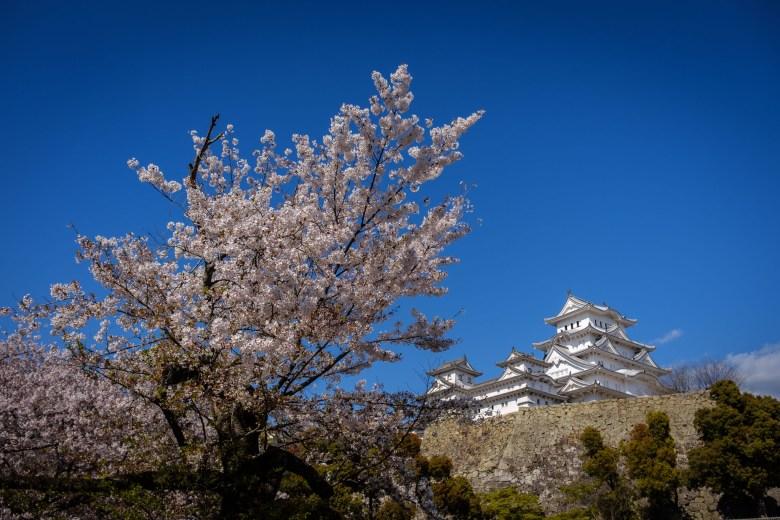 Japan Himeji 28