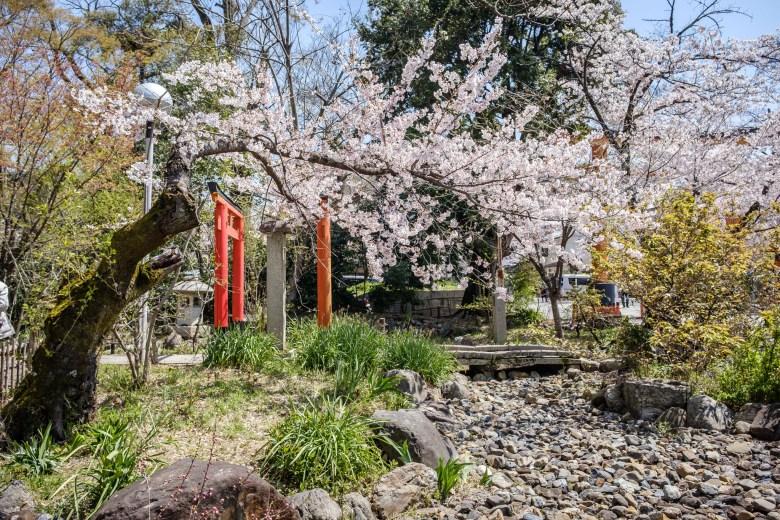 Japan Kyoto 037