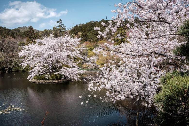 Japan Kyoto 048
