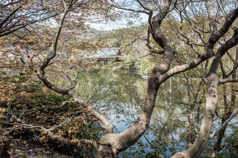 Japan Kyoto 049