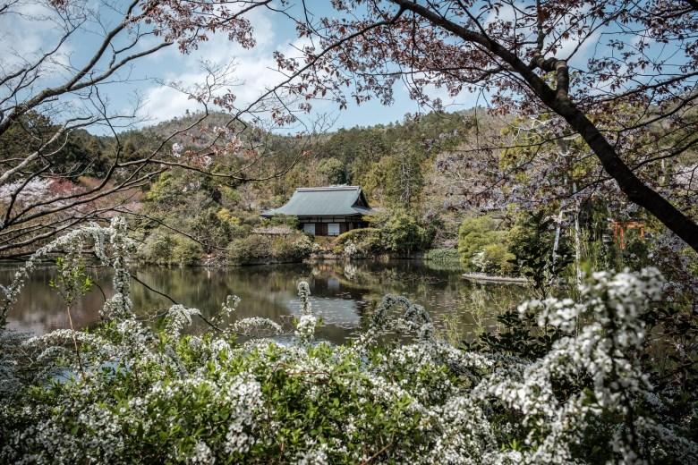 Japan Kyoto 050