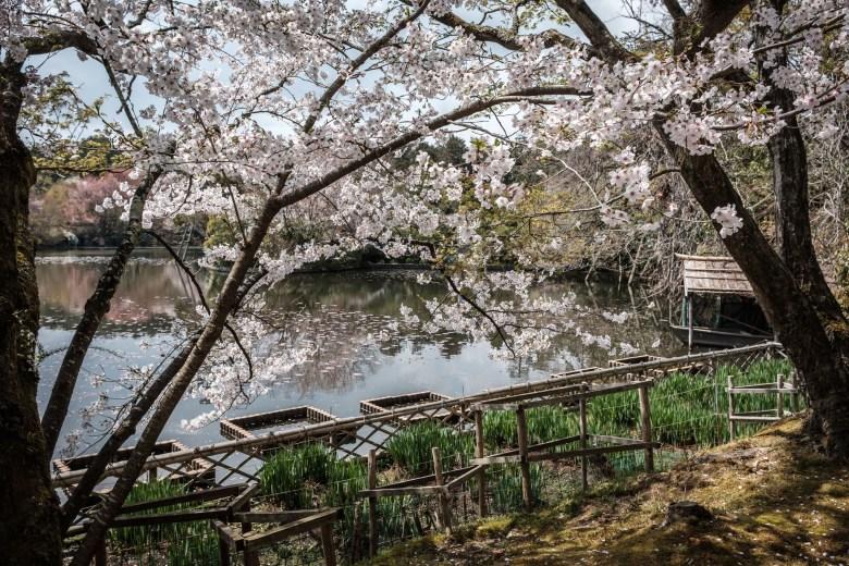Japan Kyoto 051