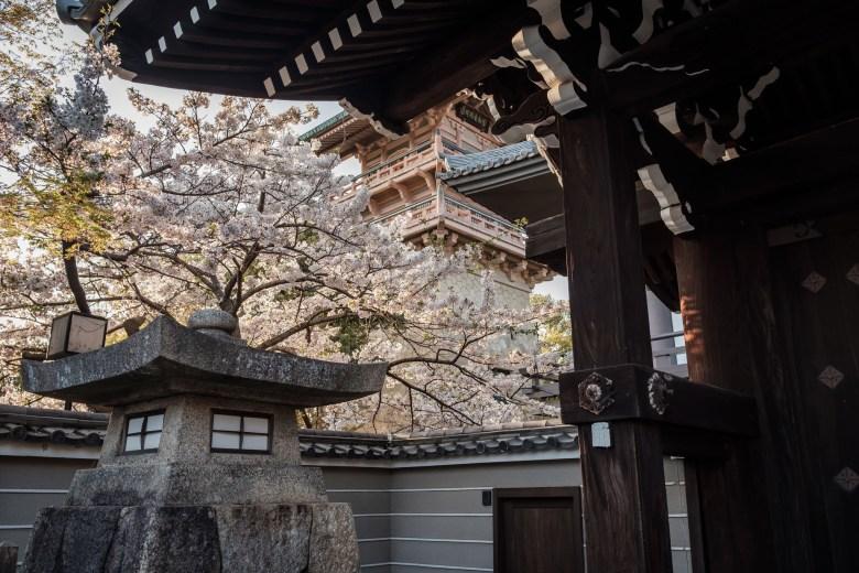 Japan Kyoto 163