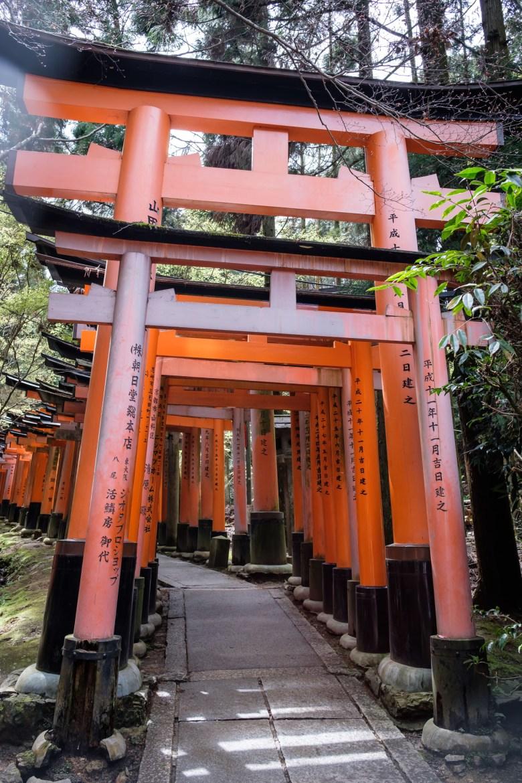 Japan Kyoto 196