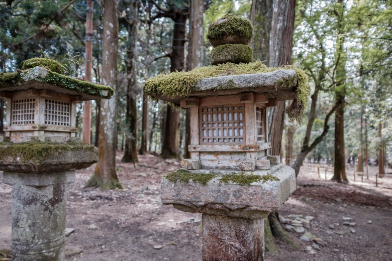 Japan Nara 33