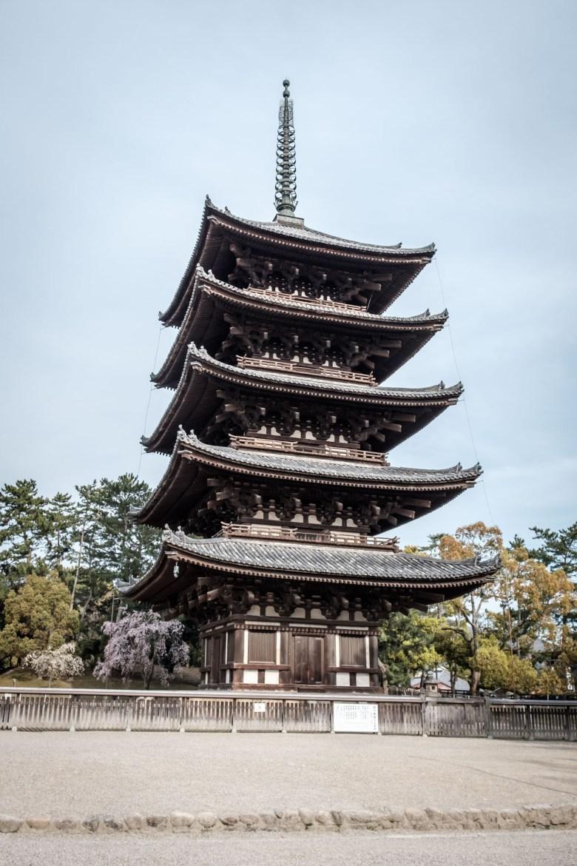 Japan Nara 49