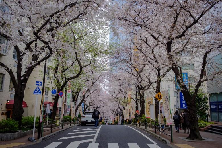 Japan Tokyo 014