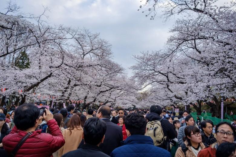 Japan Tokyo 046