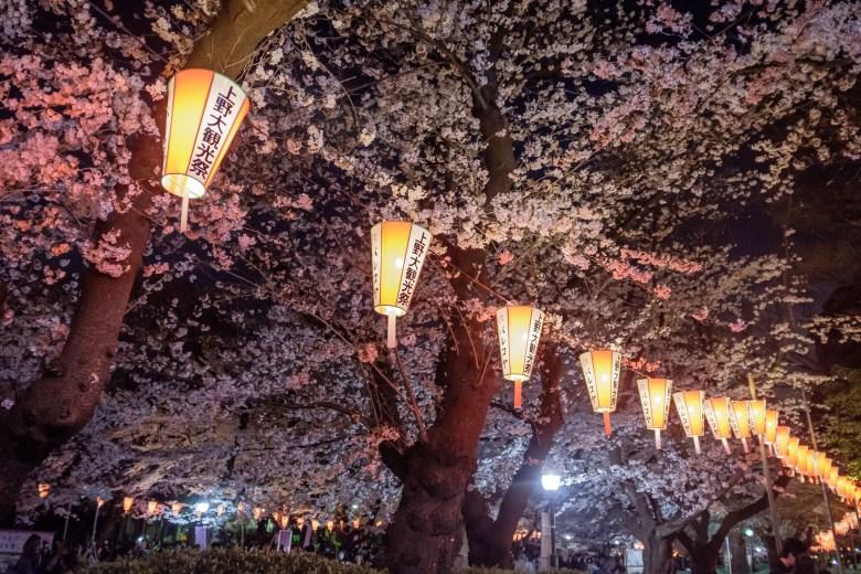 Japan Tokyo 059