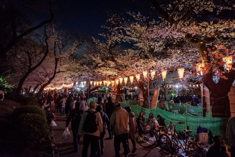 Japan Tokyo 061