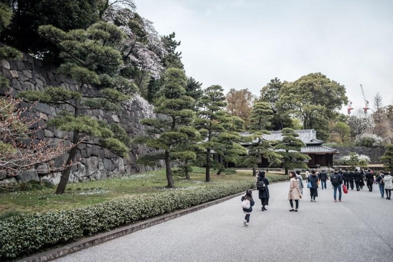 Japan Tokyo 074