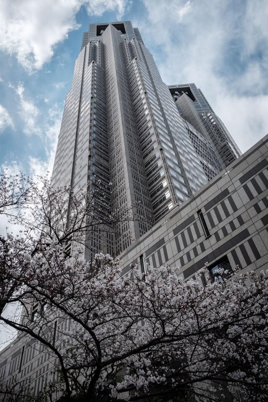 Japan Tokyo 103