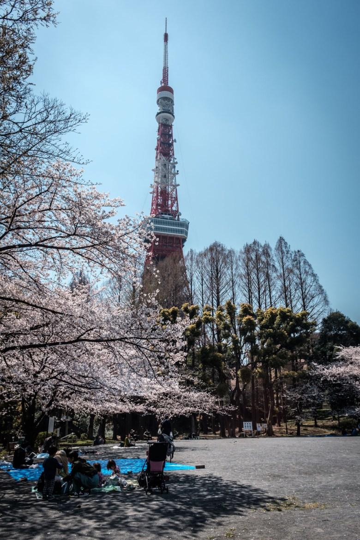Japan Tokyo 172