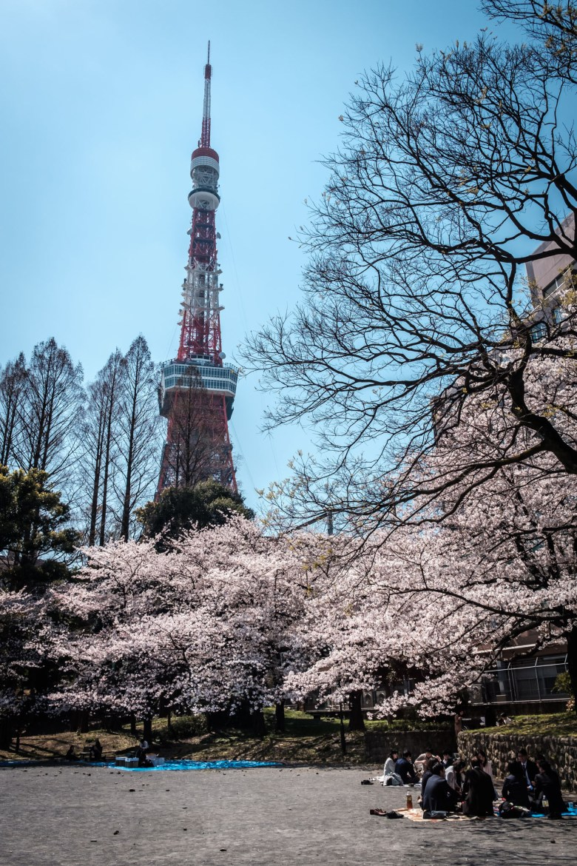 Japan Tokyo 174