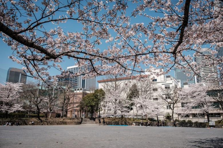 Japan Tokyo 175