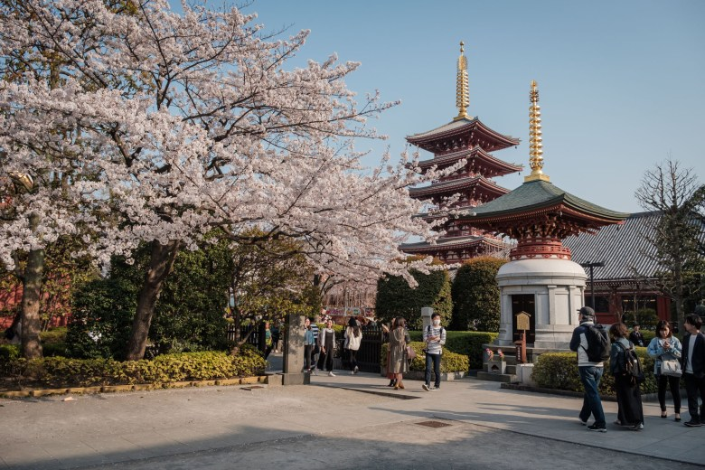 Japan Tokyo 348