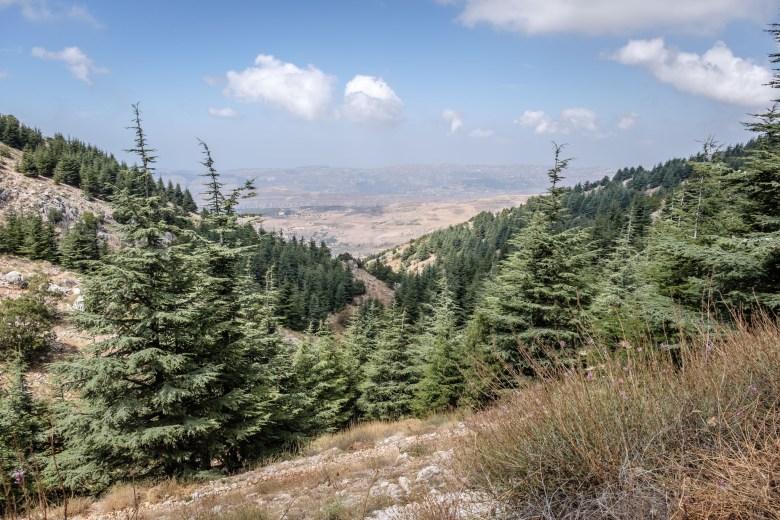 Lebanon Barouk 16