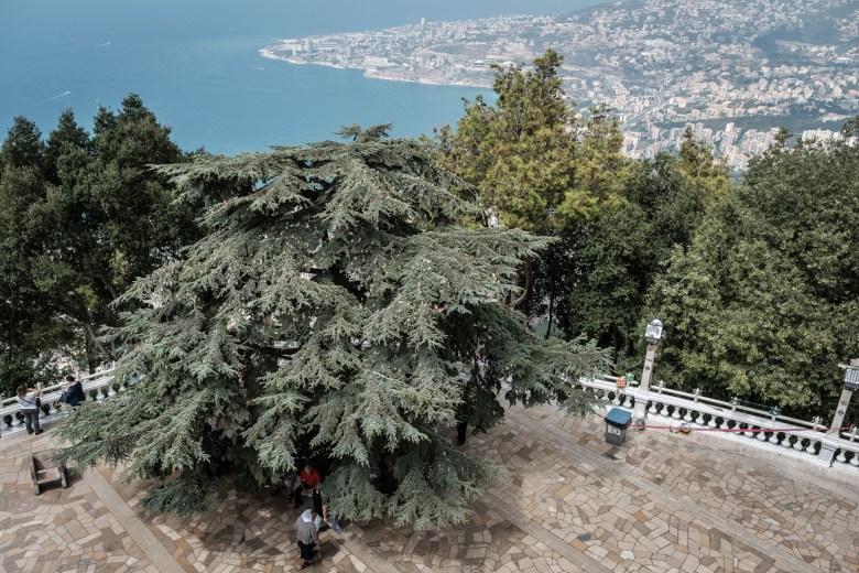 Lebanon Jounieh 12