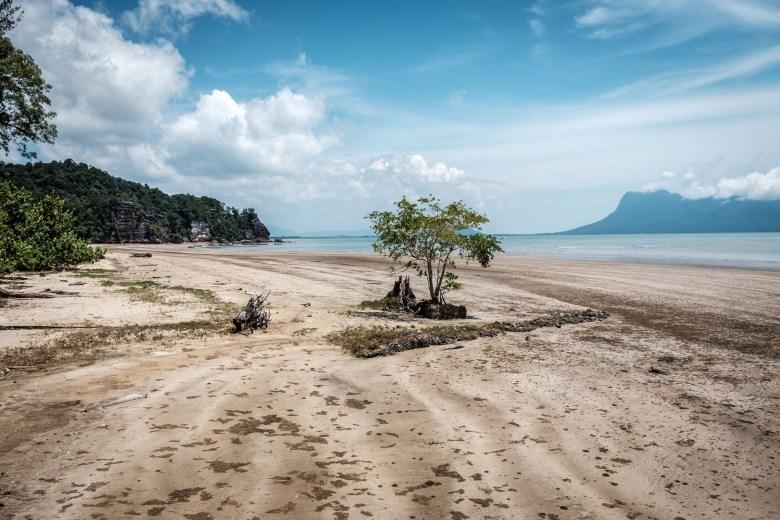 Malaysia Bako National Park 016