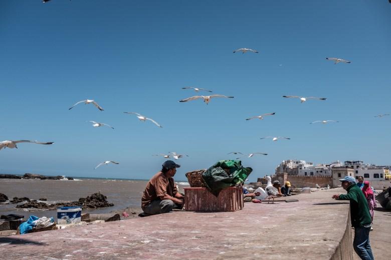 Morocco Essaouira 32