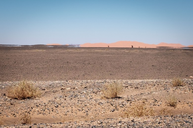 Morocco Merzouga 043