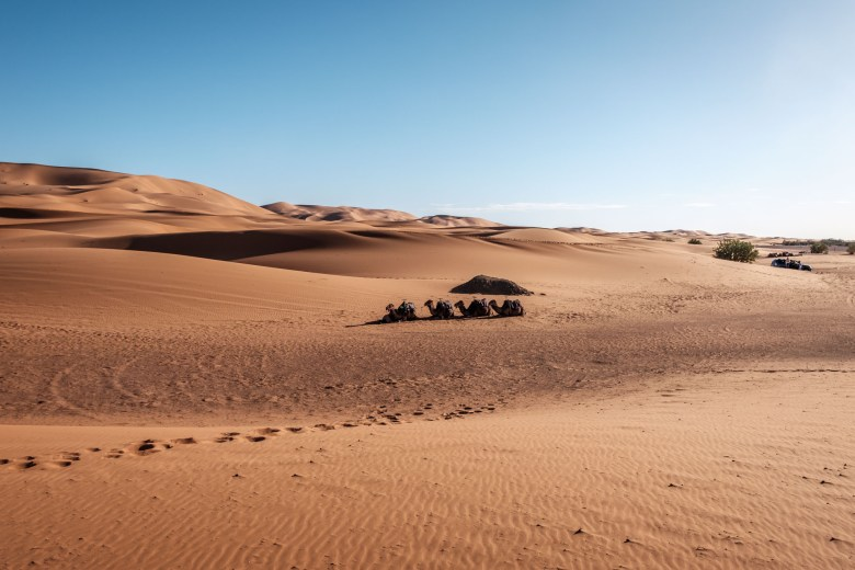 Morocco Merzouga 046