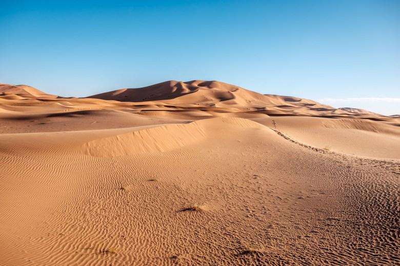 Morocco Merzouga 056