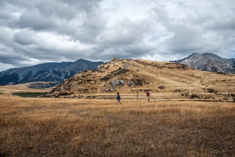 New Zealand Castle Hill 08