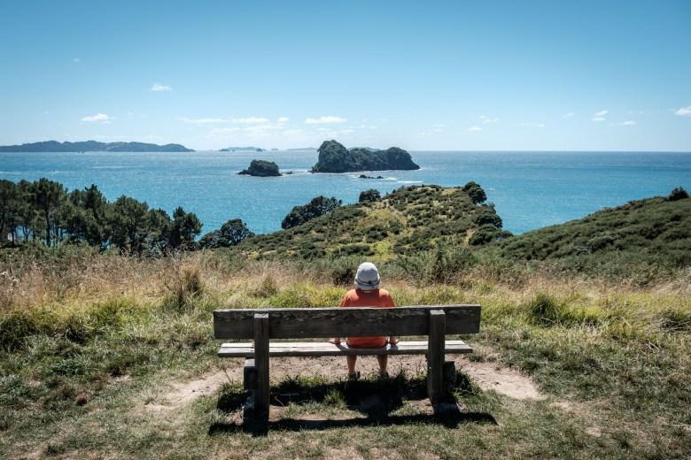 New Zealand Coromandel 11