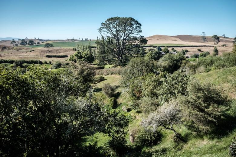 New Zealand Hobbiton 12
