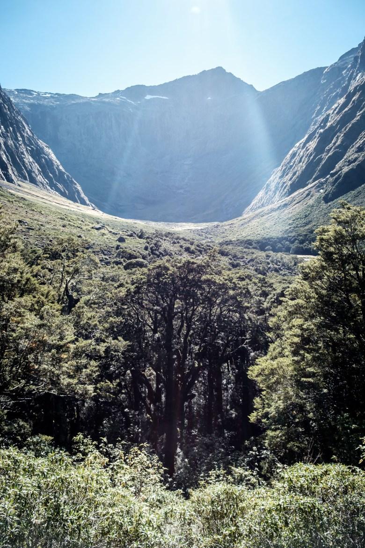 New Zealand Milford Sound 06