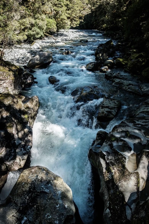 New Zealand Milford Sound 17