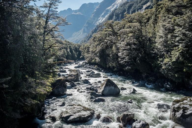New Zealand Milford Sound 20