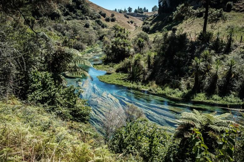 New Zealand Putaruru 05