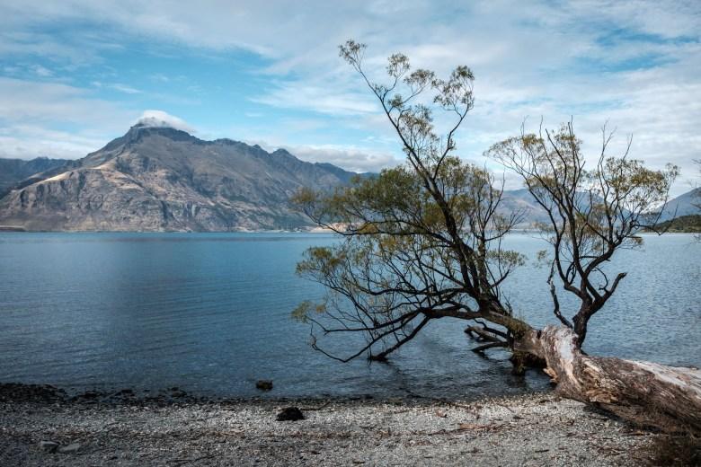 New Zealand Queenstown 086