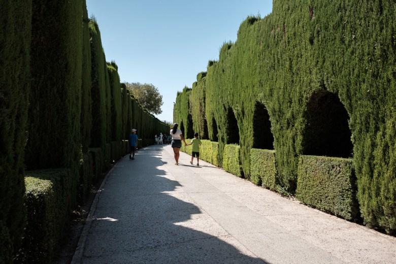 Spain Granada 062