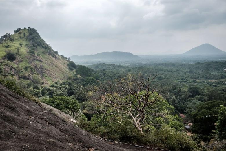 Sri Lanka Dambulla 04
