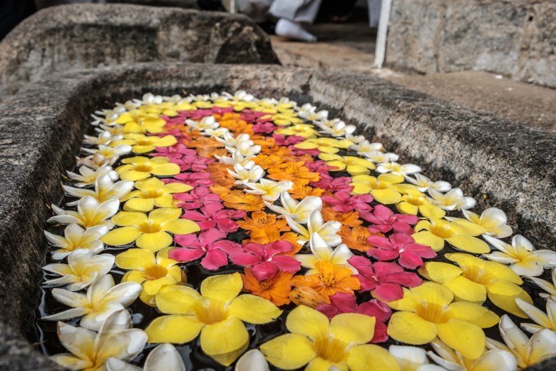 Sri Lanka Dambulla 06