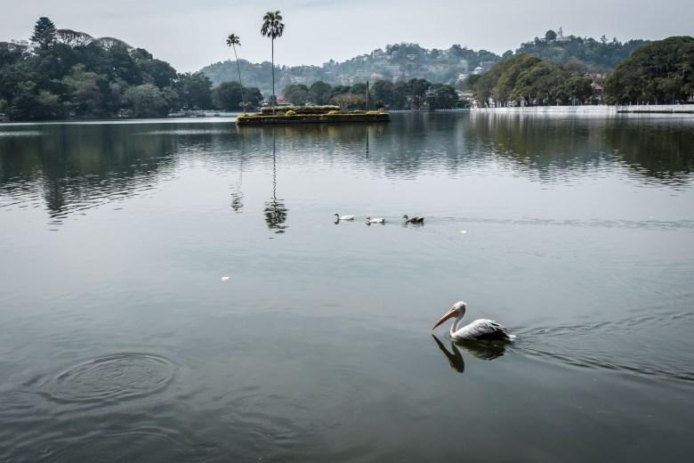 Sri Lanka Kandy 24