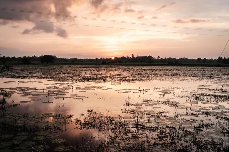 Sri Lanka Mihintale 36