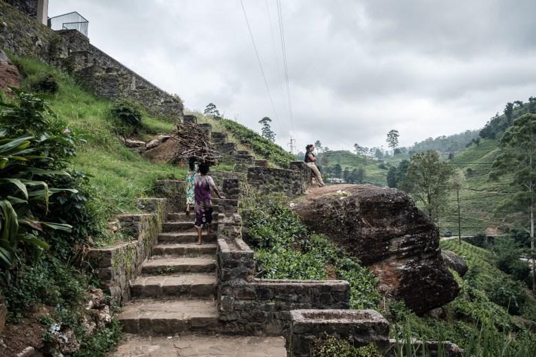 Sri Lanka Nuwara Eliya 65