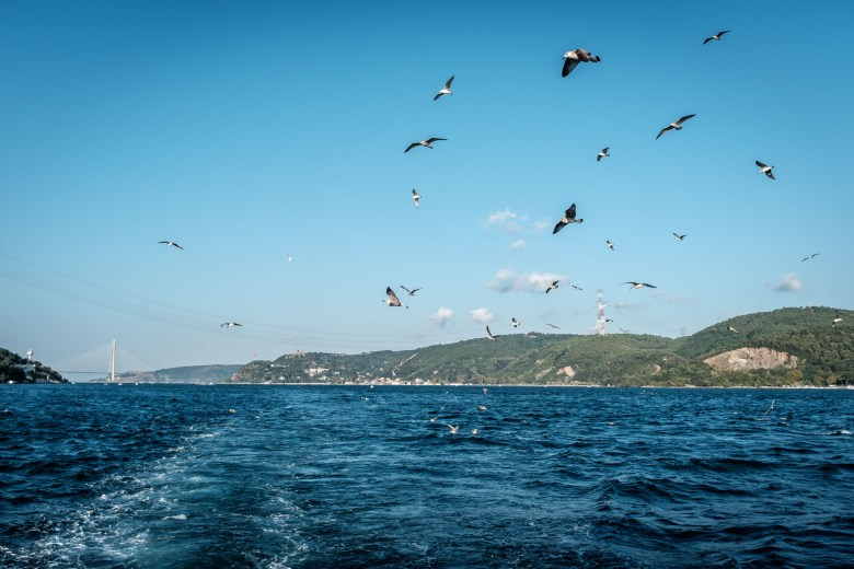 Turkey Istanbul 048