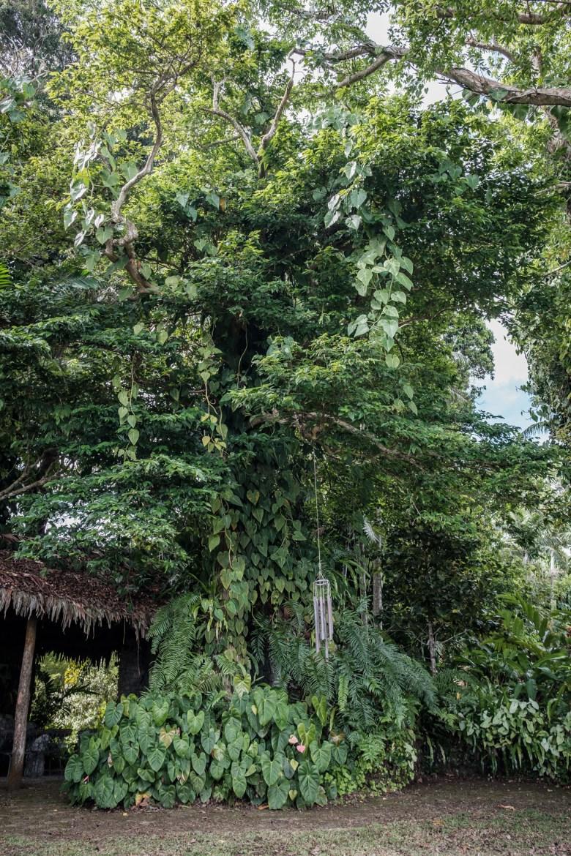 Vanuatu Efate 017