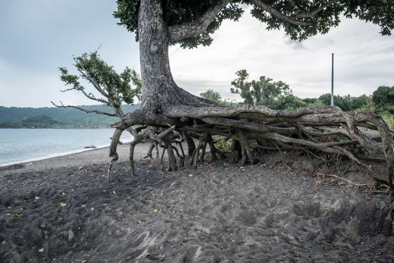 Vanuatu Efate 046